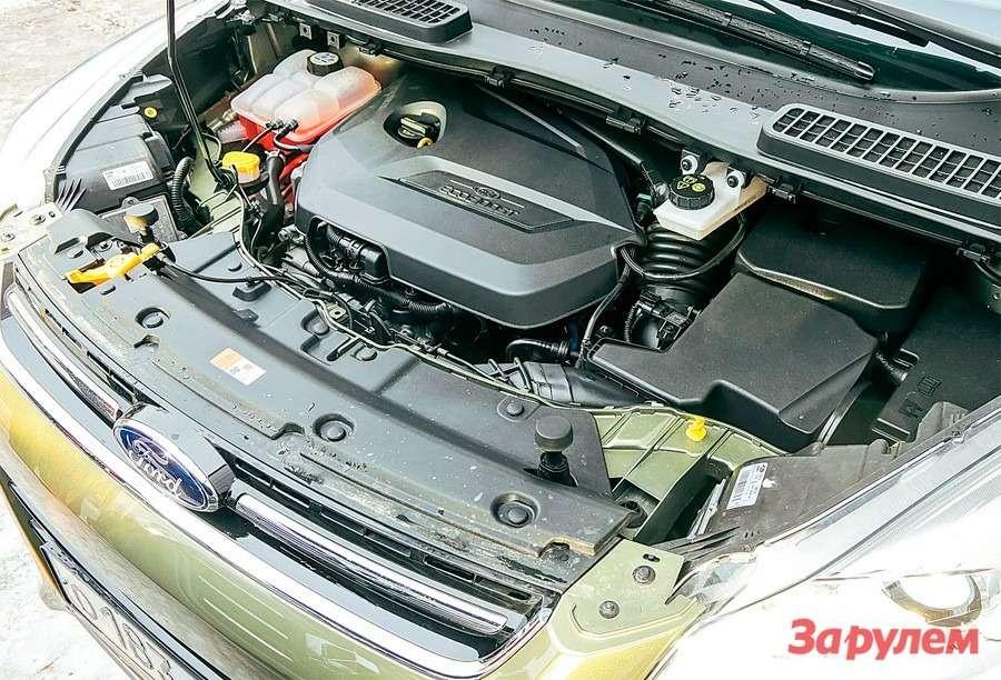 Renault Koleos 2,5vs Ford Kuga 1,6: реальный расход— фото 260656