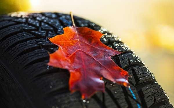 Ушипов больше нет преимуществ— все вопросы про зимние шины