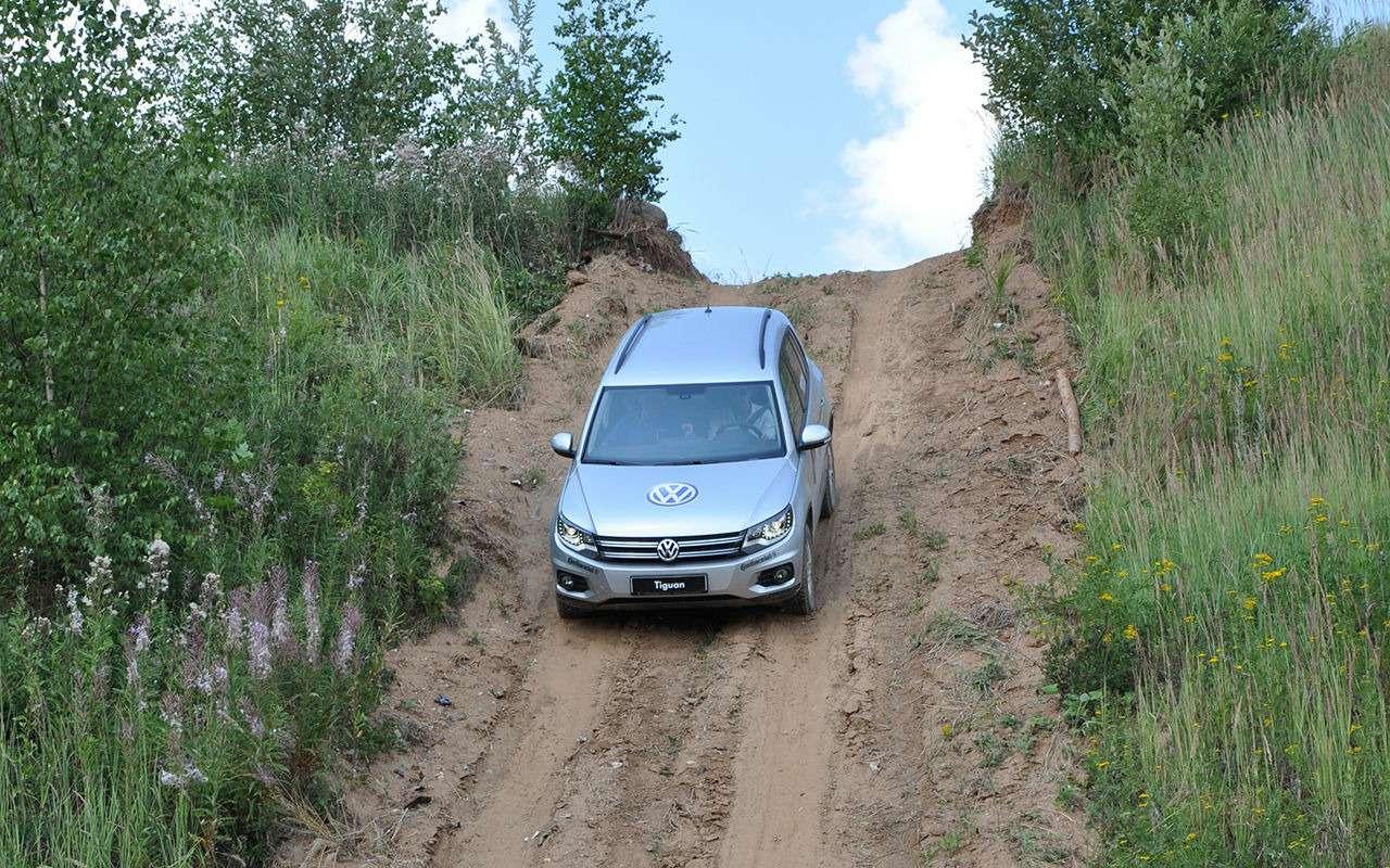 Volkswagen Tiguan спробегом: как некупить хлам— фото 978662