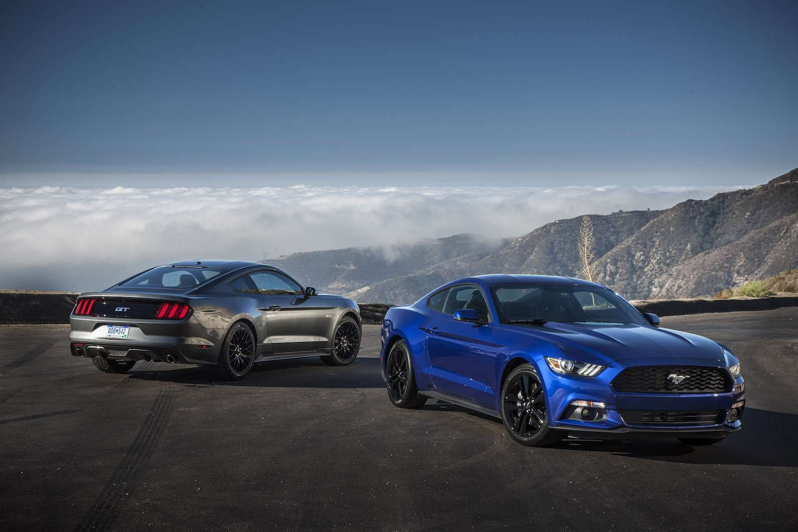 2015 Mustang Media Drive inL.A.