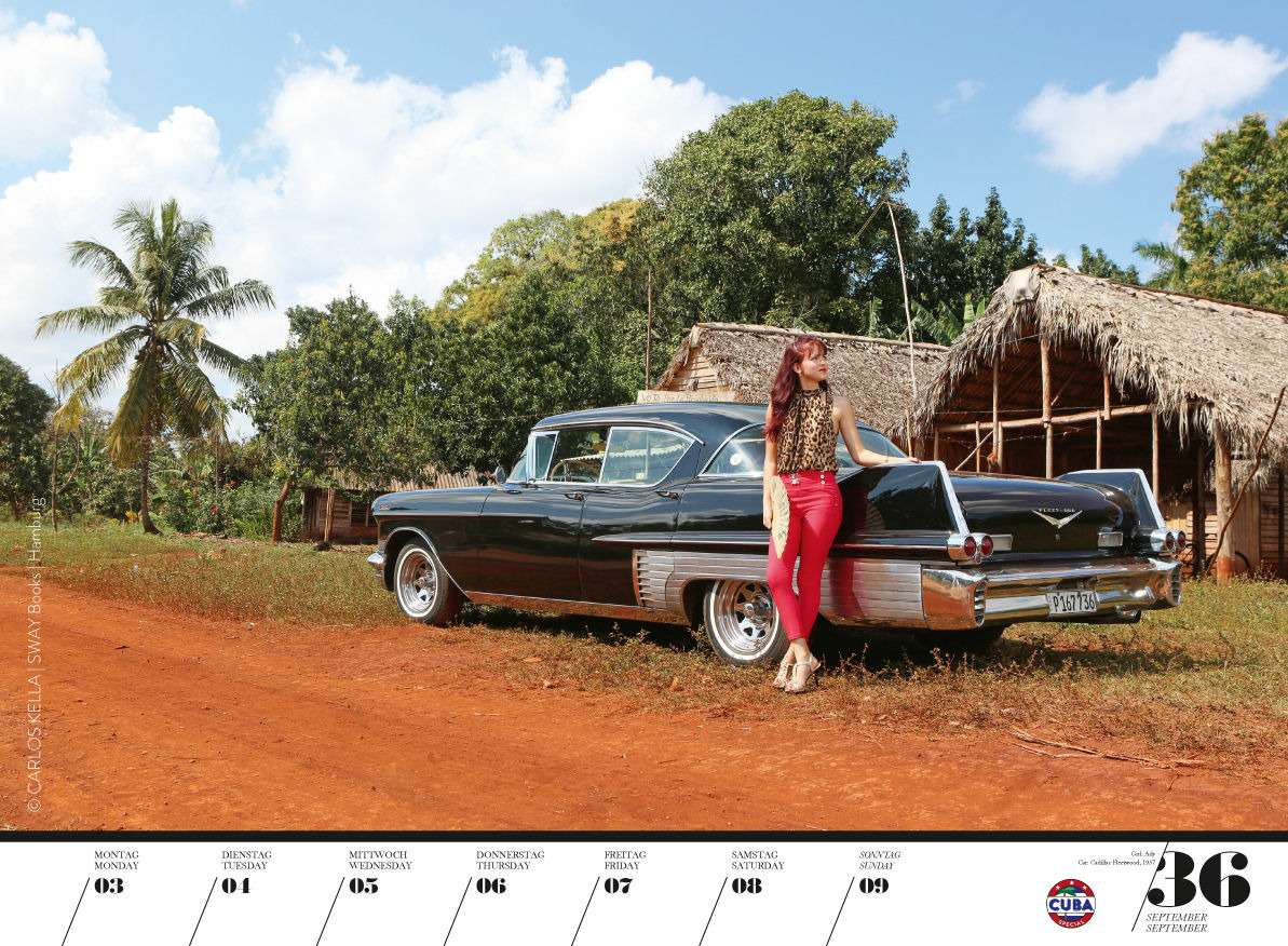 Юбилейный пин-ап календарь: девушки илегендарные машины— фото 798222
