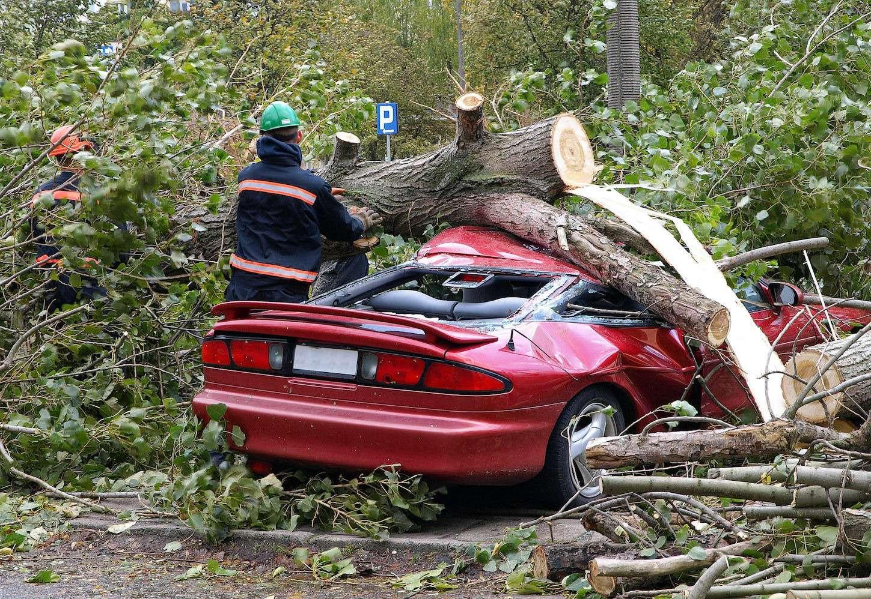 Чтоделать, если ваш автомобиль пострадал напарковке?— фото 625268