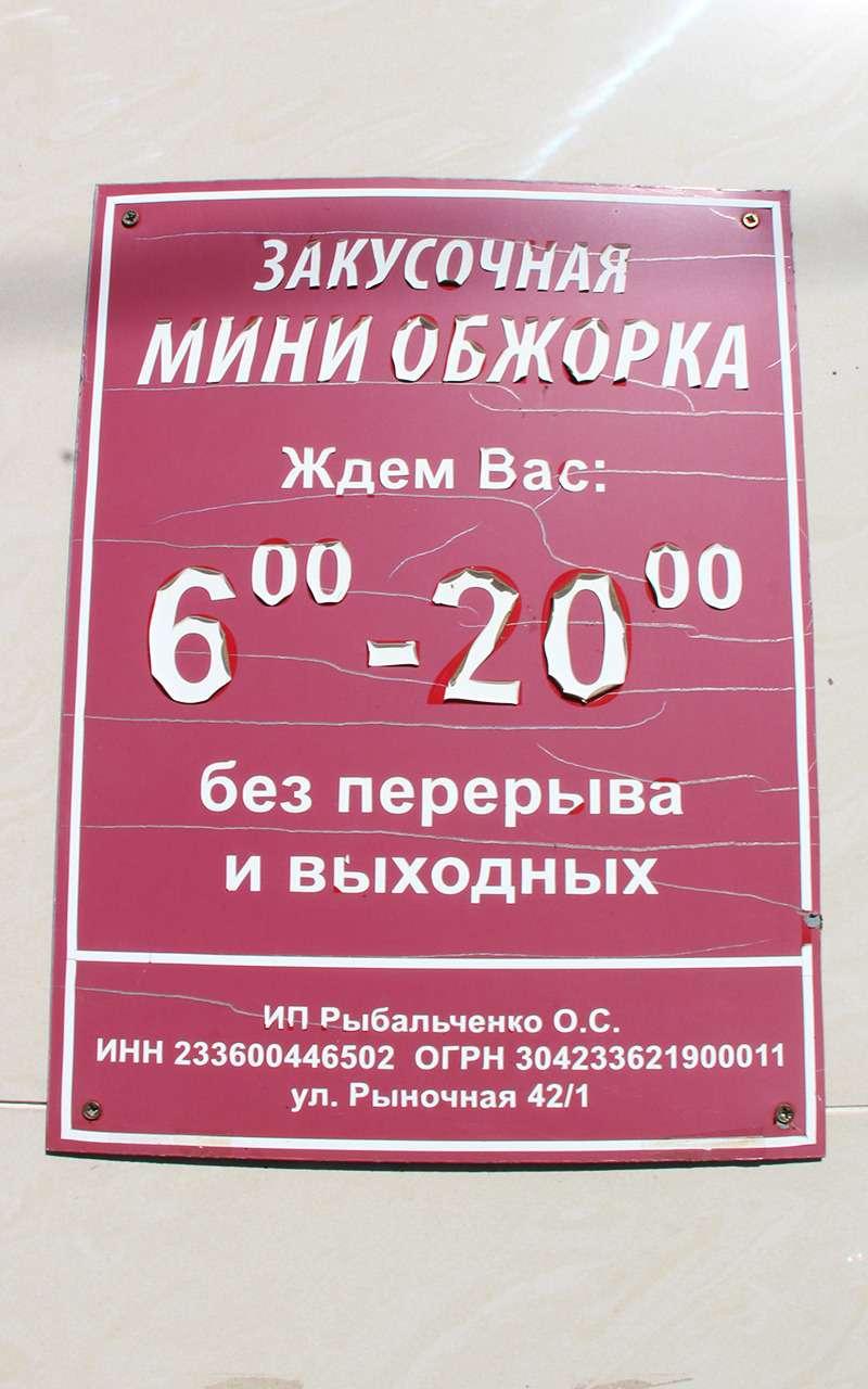 Марш-бросок вКрым: расход топлива ицена бензина— фото 912316