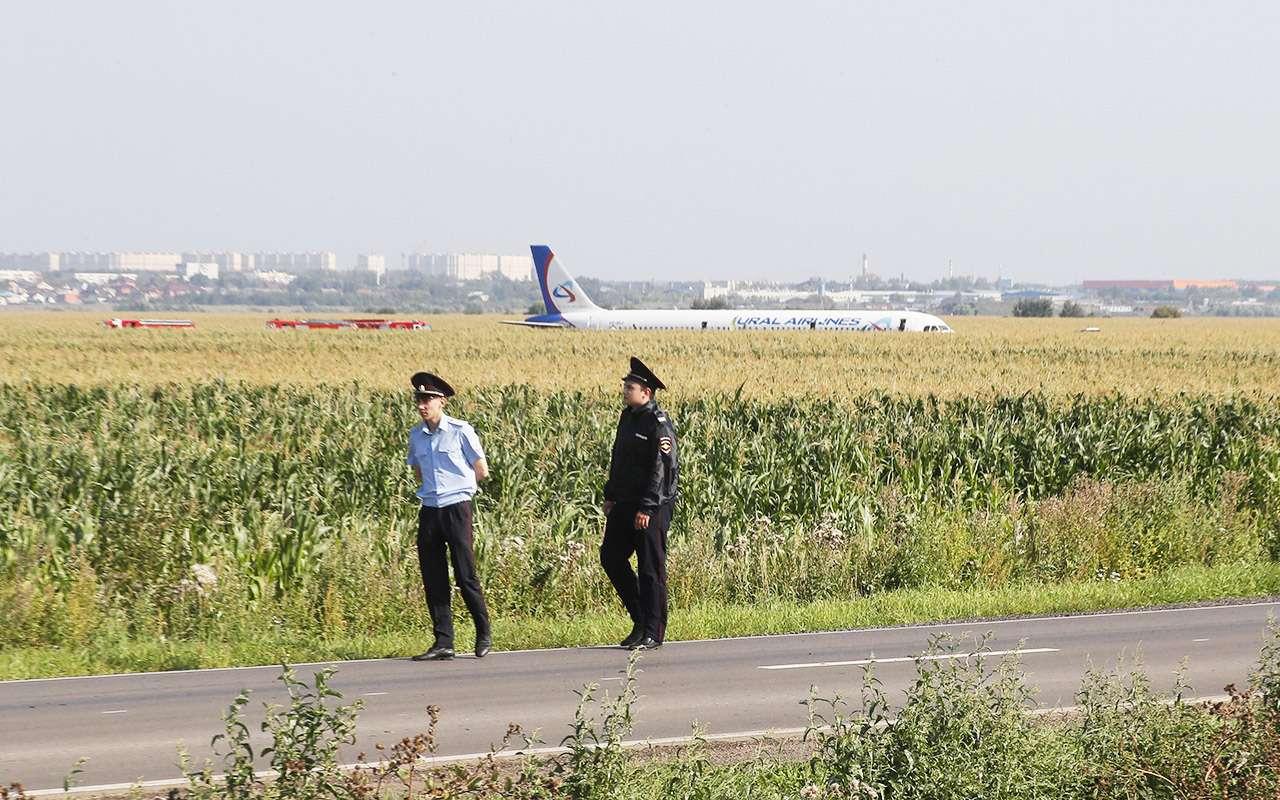 В Раменском районе ограничили автодвижение из-за самолета— фото 992131