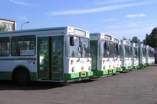 avtobus_no_copyright