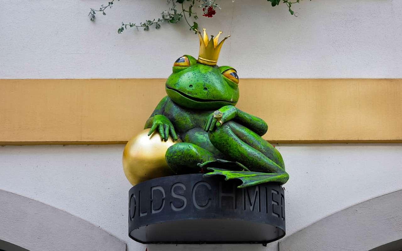 Принц-лягушка: такой Шкоды выне видели!— фото 1010575