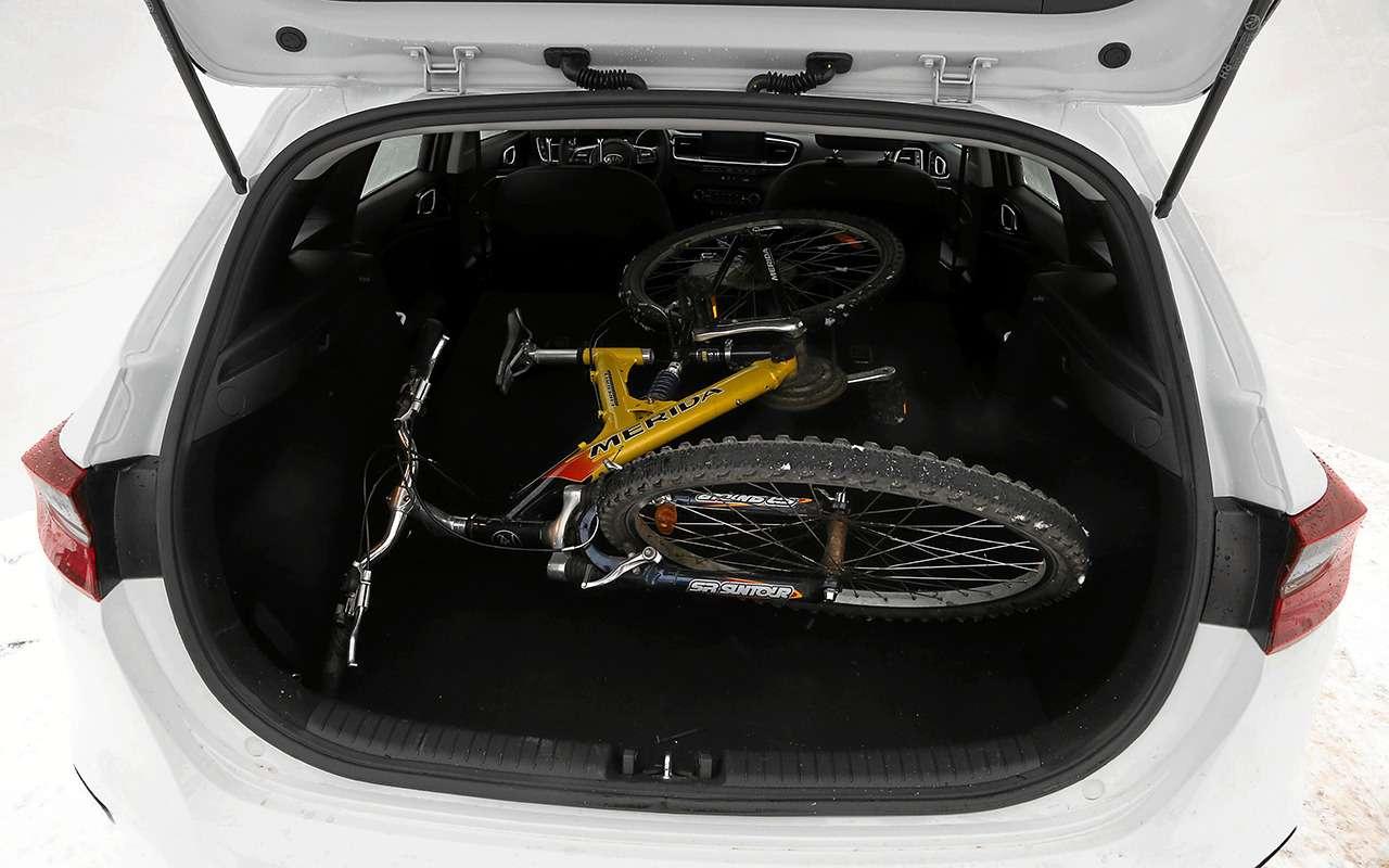 KiaCeed: тестируем вместимость багажника— фото 969440