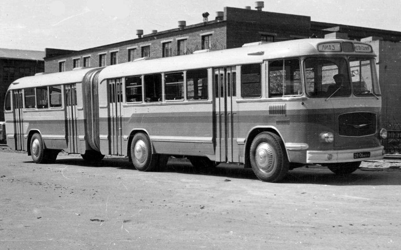 Автобусы, накоторых выникогда не ездили— фото 868815