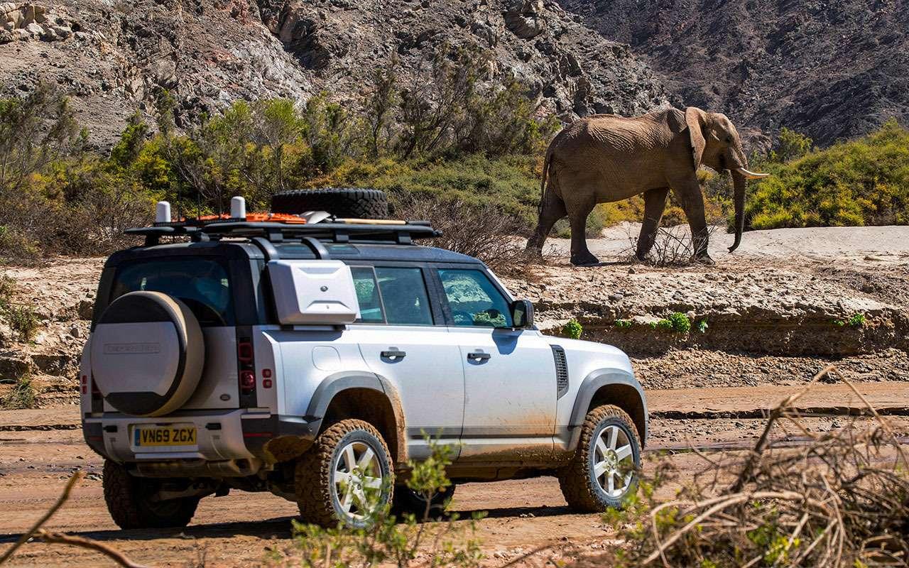 Land Rover Defender 2020: большой африканский тест— фото 1114510