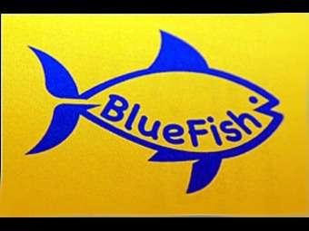 BlueFish_no_copyright