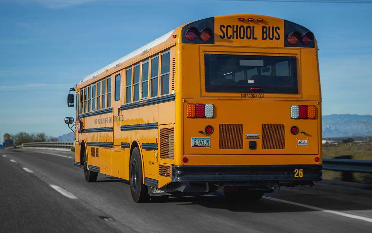 Водитель автобуса часто болтал сошкольниками истал учителем— фото 1144111