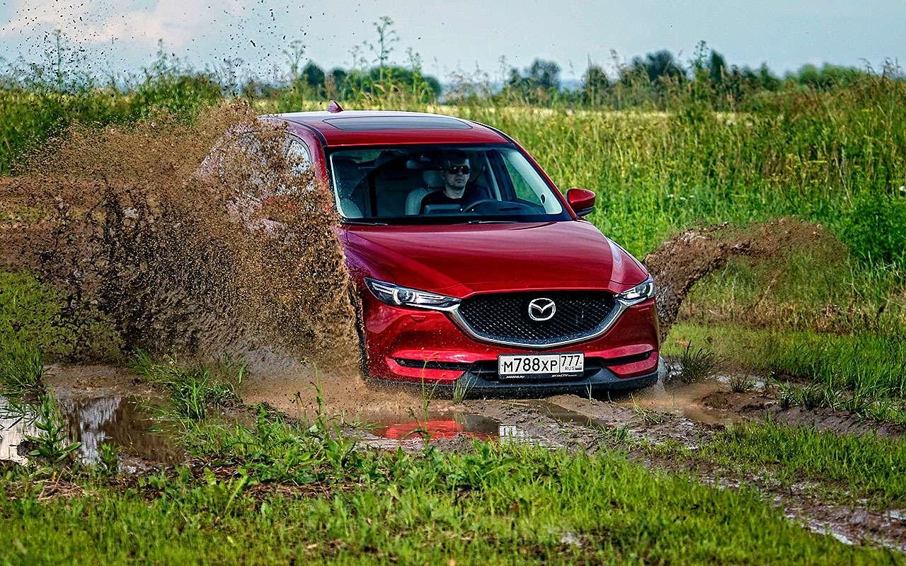 Mazda CX-5— тест-драйв пороссийским дорогам— фото 784042