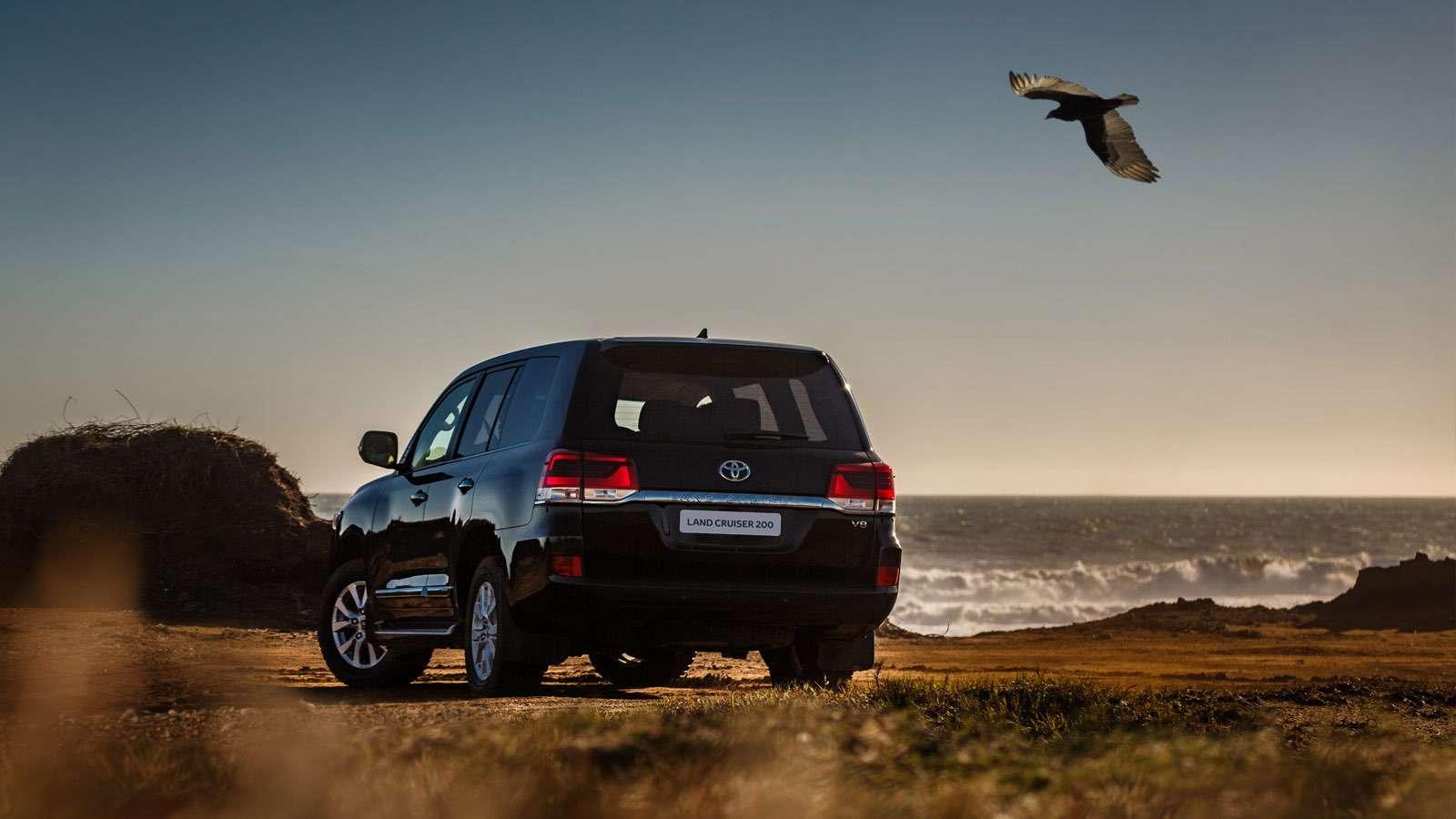 Наглость непорок—  самые дорогие закупки автомобилей госкомпаниями— фото 803565