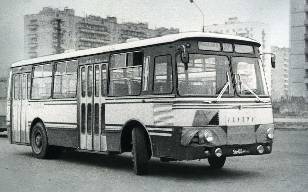Автобусы, накоторых выникогда не ездили— фото 868816