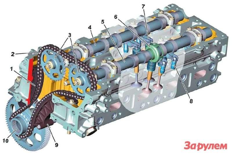 Головка блока двигателя OM6511— направляющая цепи 2— цепь 3— звездочки 4— впускной распредвал 5— выпускной распредвал 6— датчик 7— коромысло сроликом 8— гидрокомпенсатор  9— натяжитель цепи  10— ведущая звездочка