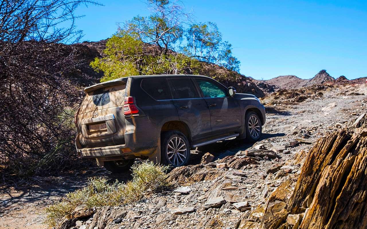 Toyota Land Cruiser Prado: онивАфрике Прадо!— фото 863399
