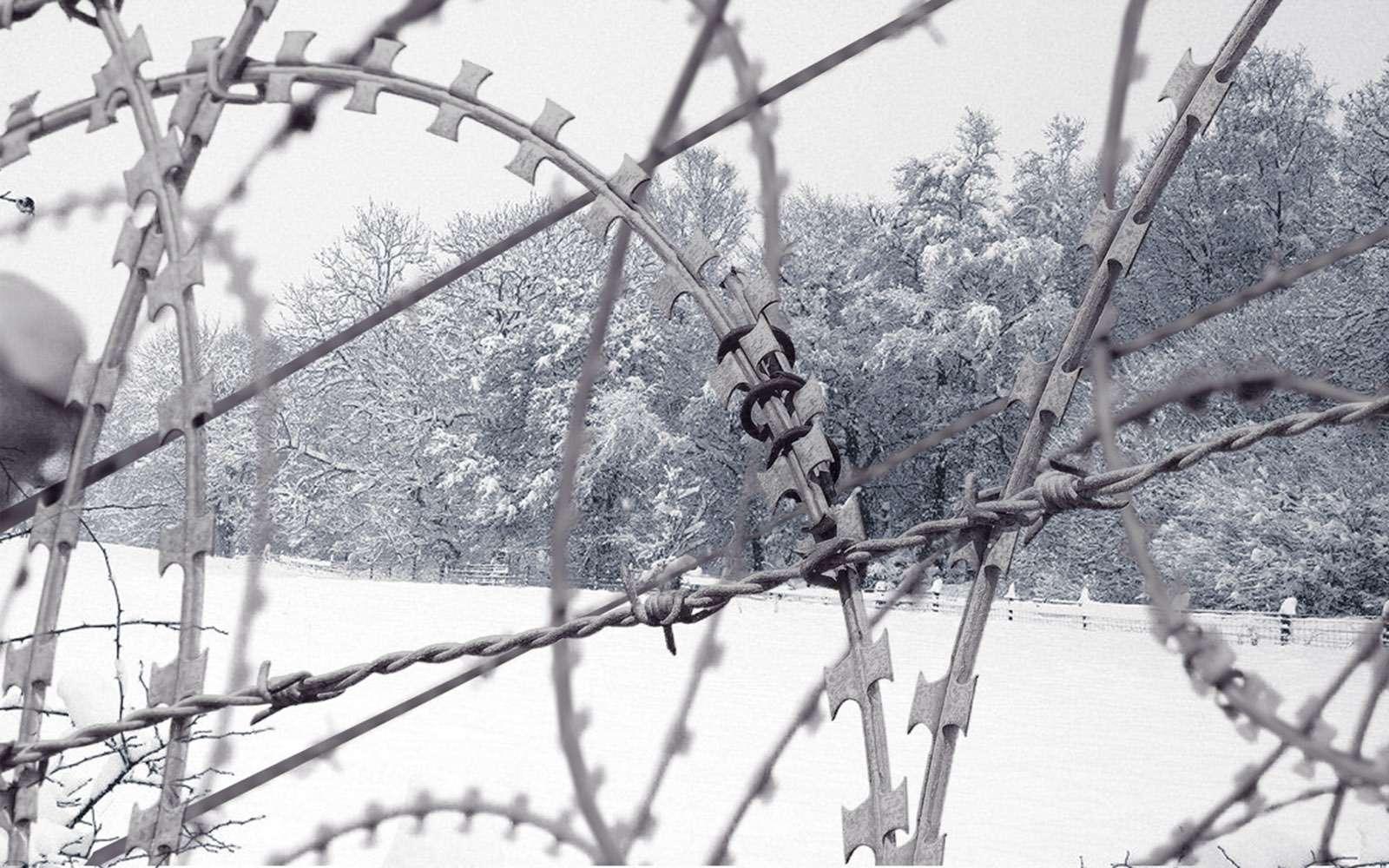 Проверь себя: 15секретов зимней езды изXXвека— фото 685791