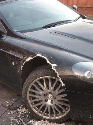 Собака съела Aston Martin DB9