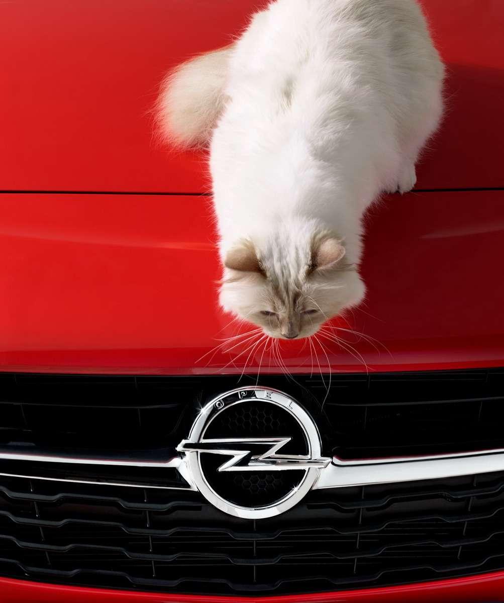 Opel-Corsa-Lagerfeld-292914_новый размер