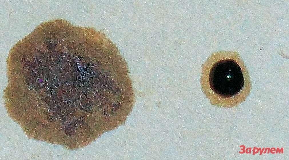 Пример капельной пробы. Слева— капелька поработавшего, ноеще живого масла расползлась вбольшую кляксу. Асправа—то самое больное масло: его капелька никуда расползаться нехочет.