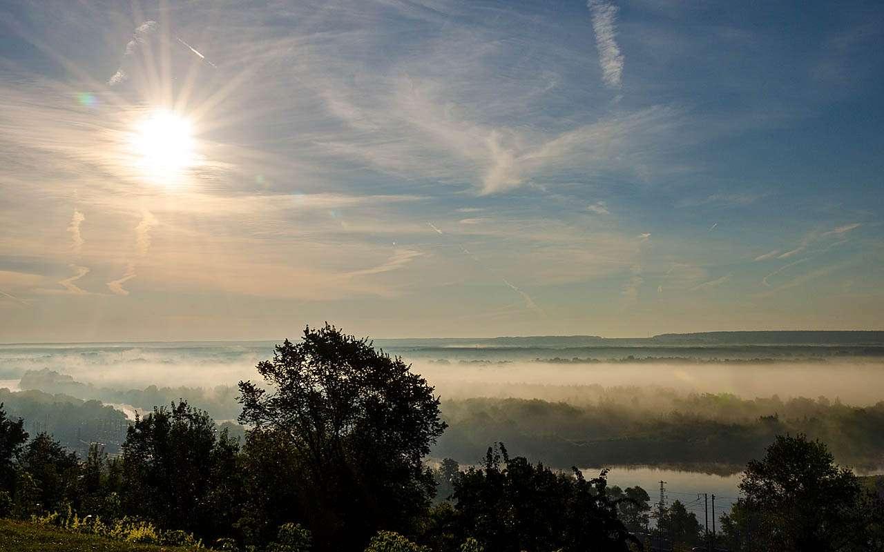 НаШкоде Кодиак воВладимир: молочные реки, кисельные берега— фото 818663