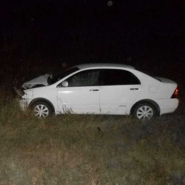 в Иркутской области автомобиль Toyota Corolla сбил медведя