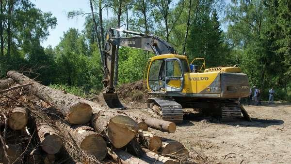 Длястроительства дублера Щелковского шоссе потребуется вырубить 100 гектаров национального парка «Лосиный остров»