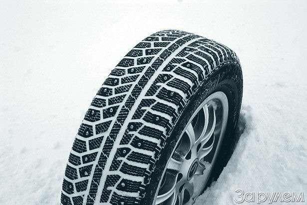 Если завтра зима— фото 77592