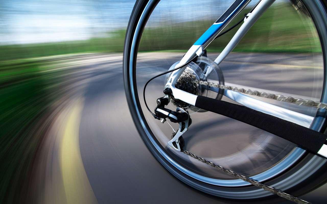 10нелепых правил дорожного движения совсего света— фото 848623
