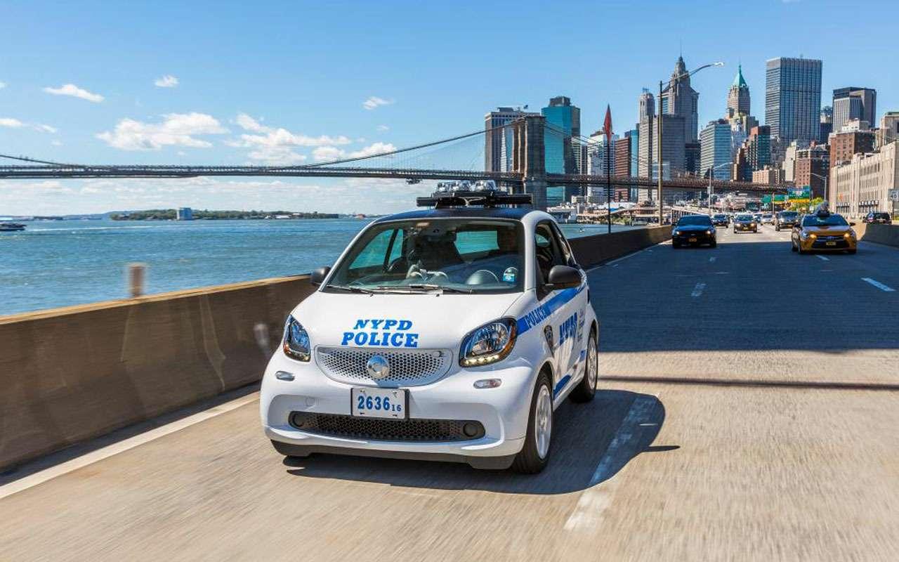 Топ-22 лучших ихудших полицейских автомобилей мира— фото 983549