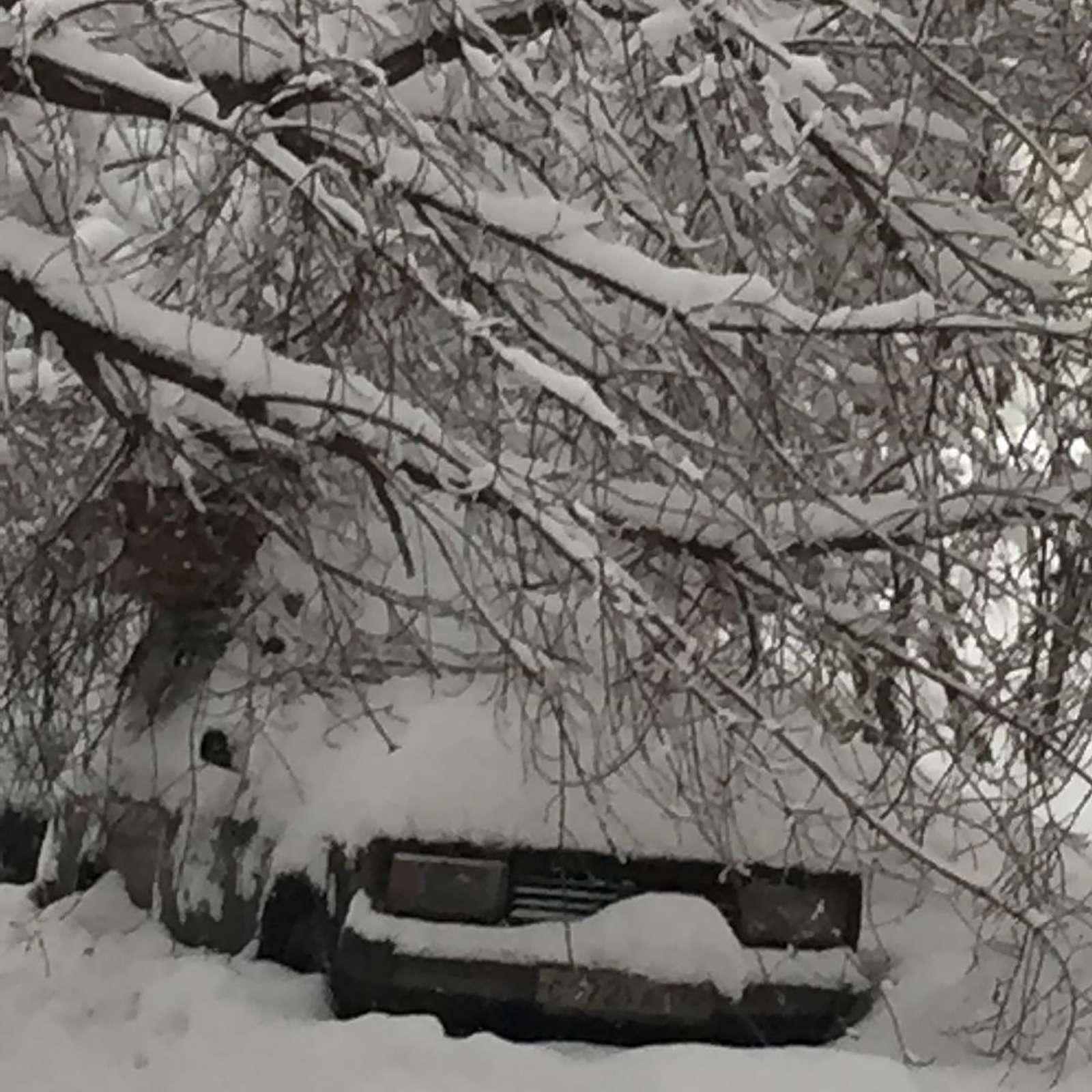«Снегопад века»: как вМоскве пережили первый катаклизм года— фото 842104