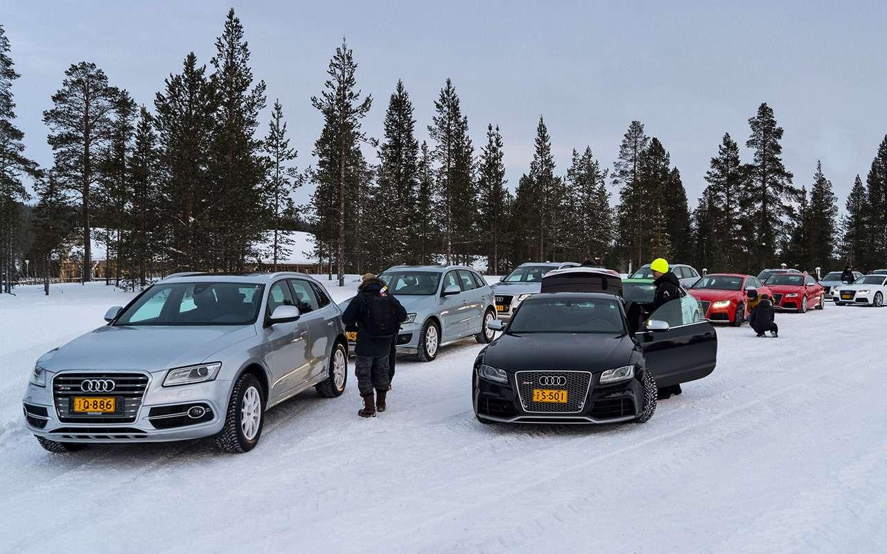 Выбираем зимние шины: без шипов, нос«когтями». Или с«карманами»?— фото 900935