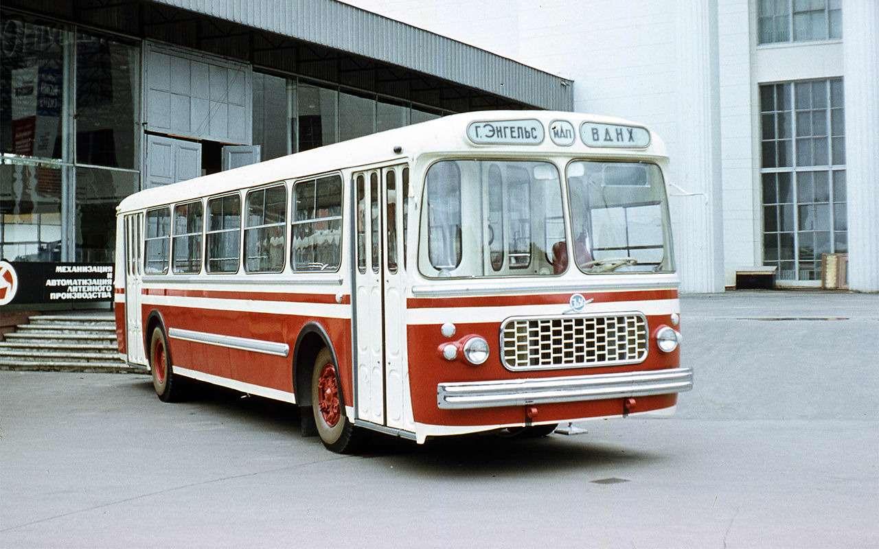 Автобусы, накоторых выникогда не ездили— фото 868823