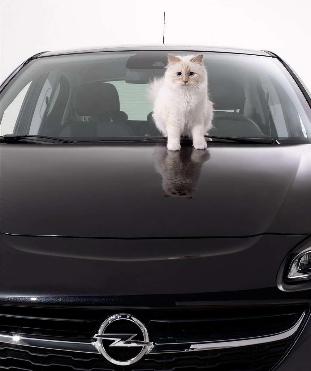 Opel-Corsa-Lagerfeld-292912_новый размер