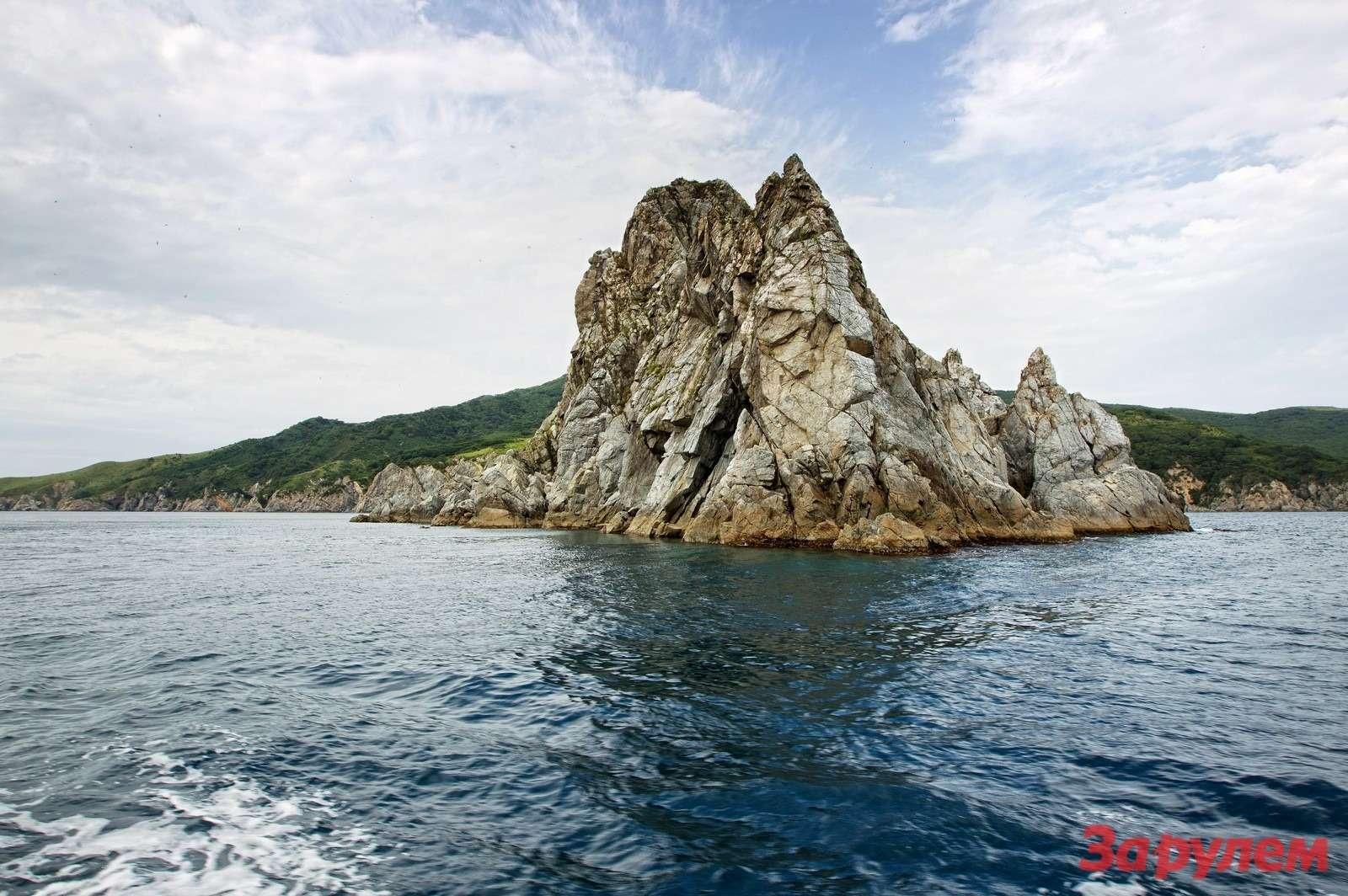 Прибрежная зона около мыса Гамова является заповедной. Для дайверов это излюбленное место дляпогружений, вхорошую погоду толща воды просматривается на20-30 метров