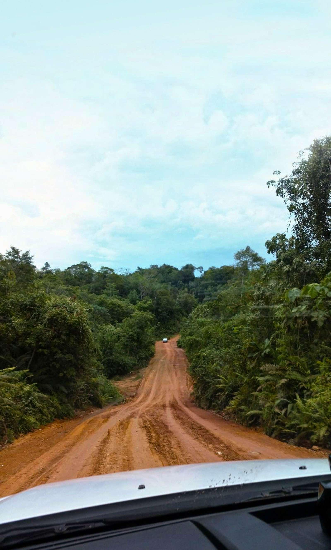 Полет наЯву: исследуем авторынок идороги Индонезии— фото 607900