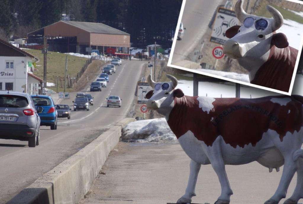 cow_radar