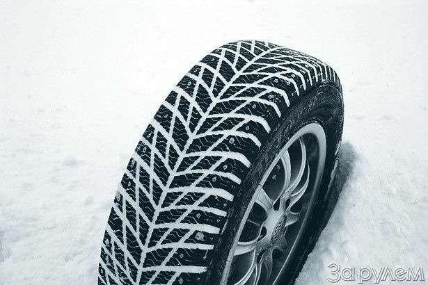 Если завтра зима— фото 77606