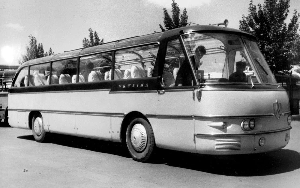 Автобусы, накоторых выникогда не ездили— фото 868819
