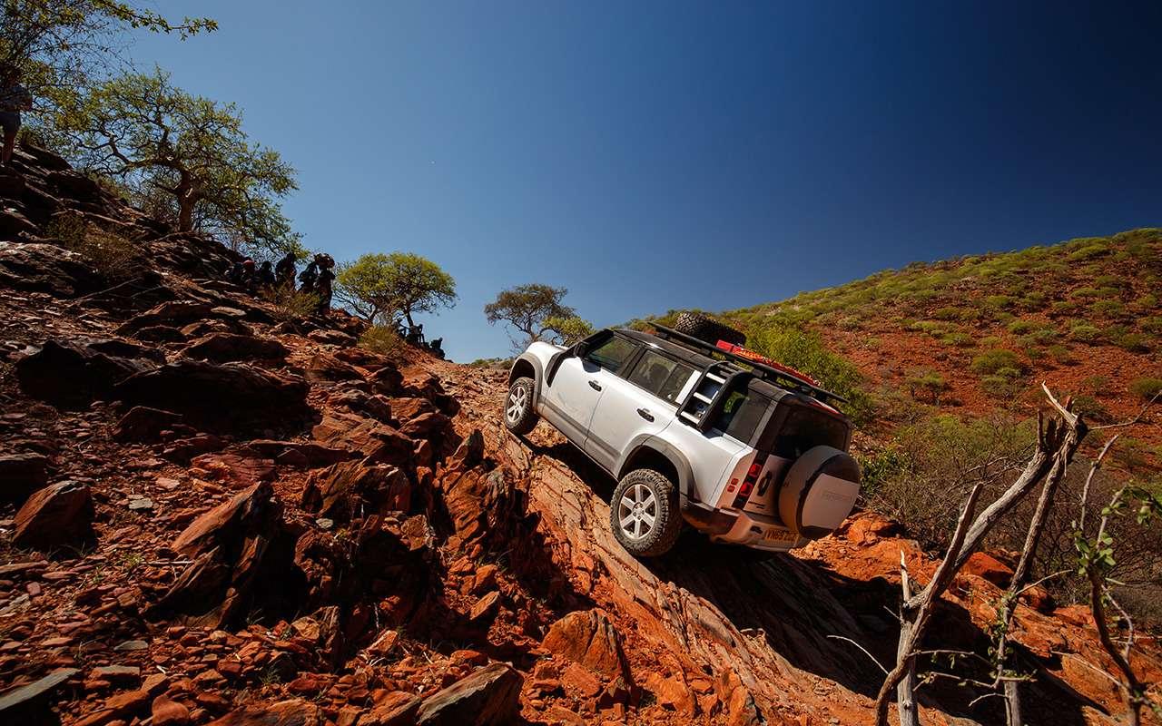 Новый Land Rover Defender— проверено нами иАфрикой— фото 1116070