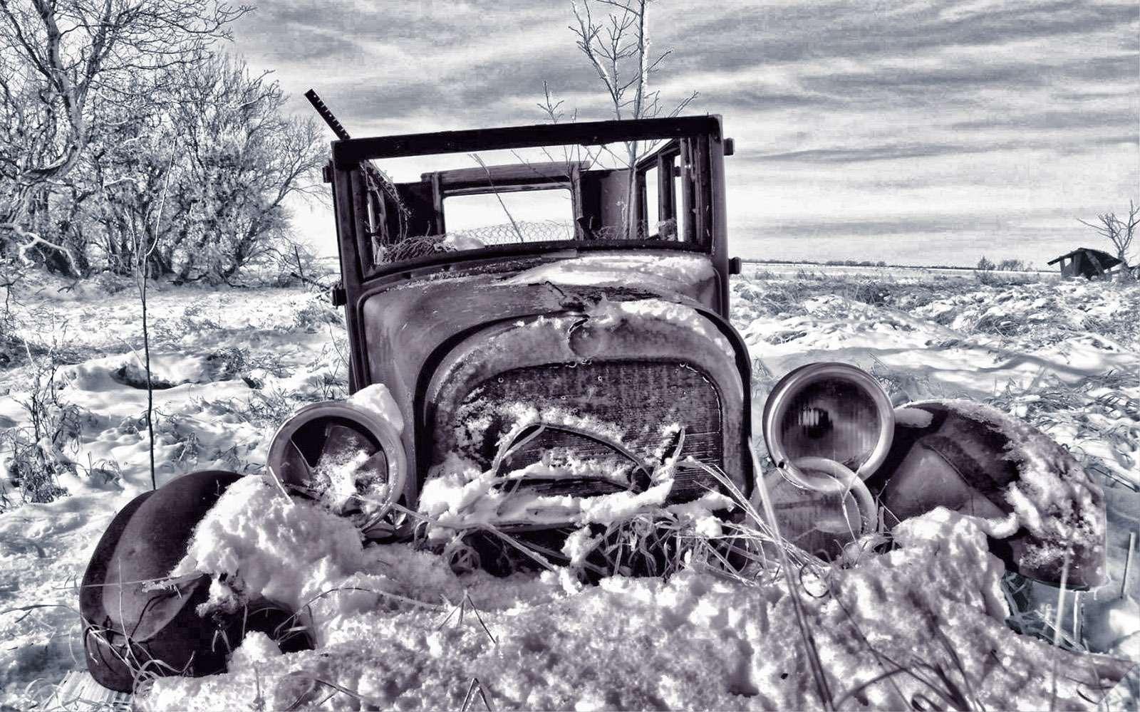 Голову— вхолоде: новогодняя подборка зимних вопросов дляводителей— фото 684596