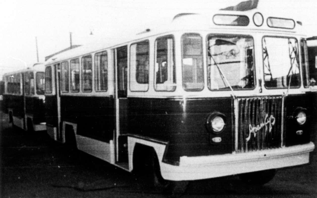 Автобусы, накоторых выникогда не ездили— фото 868811