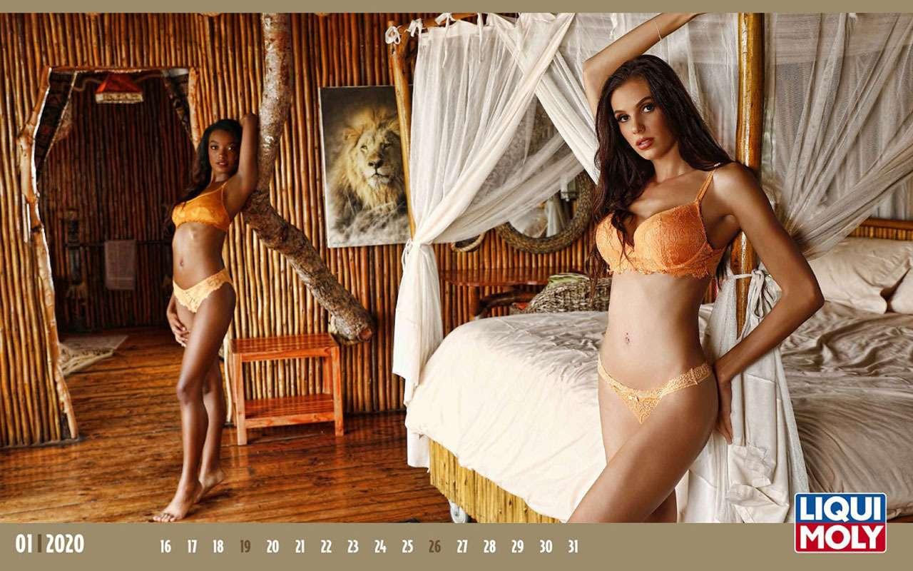 Повесь настену: календарь скрасотками имаслом на2020год— фото 1020416