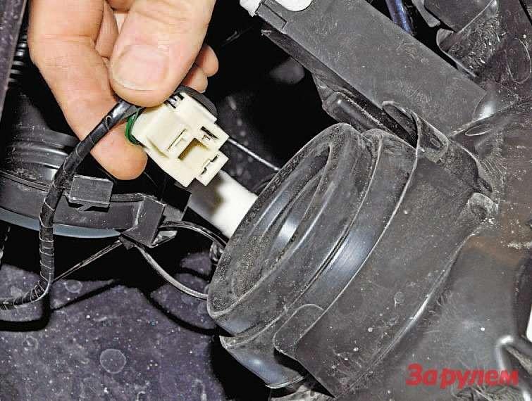 Отсоединяем колодку жгута проводов отвыводов лампы