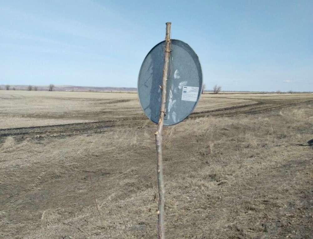 Дорожные знаки наспиленных ветках. Экономия или шутка?— фото 863108