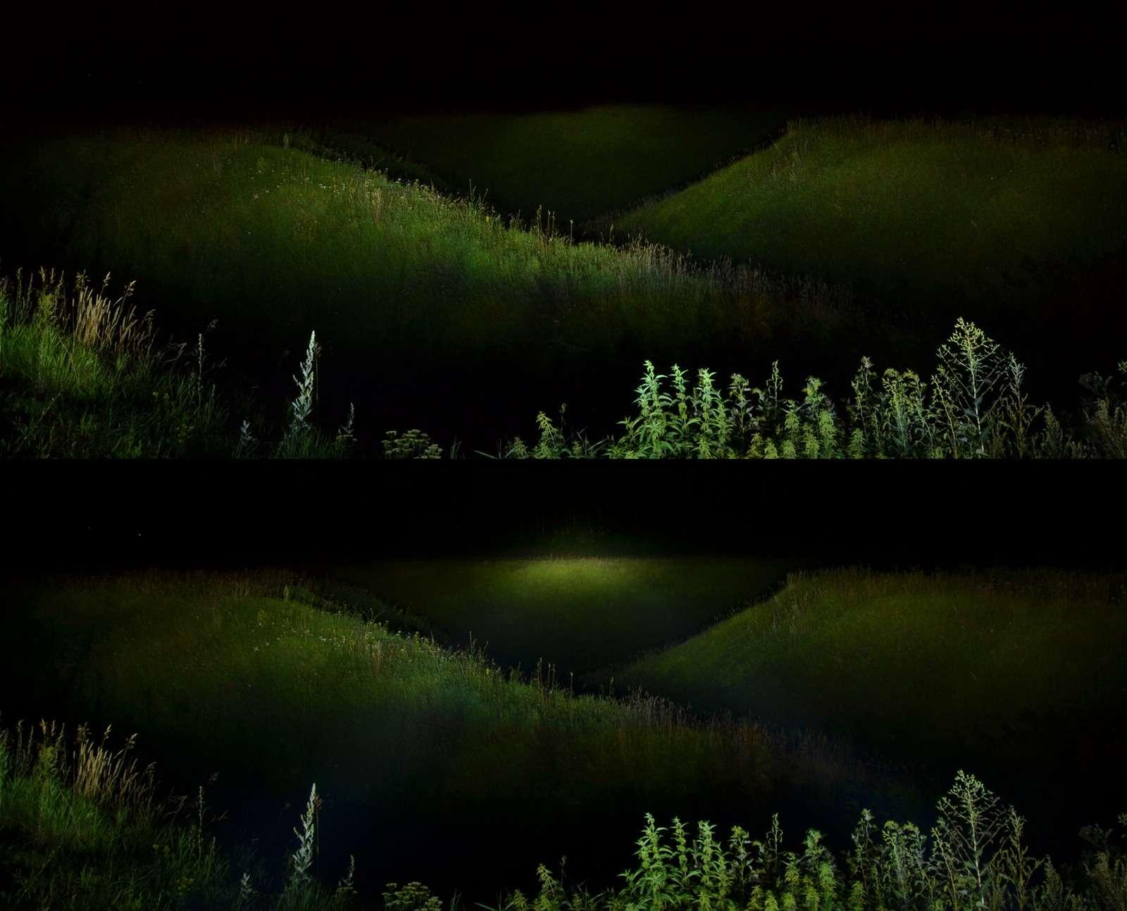 Большое путешествие наШкоде Кодиак: «однушка» наколесах— фото 814347