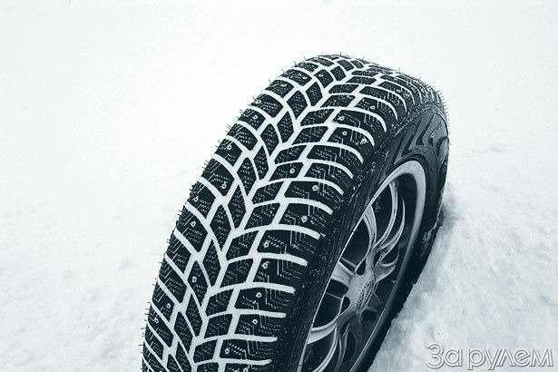 Если завтра зима— фото 77596