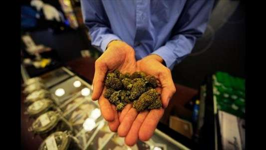 Насвай из марихуаны флэшбэки от марихуаны